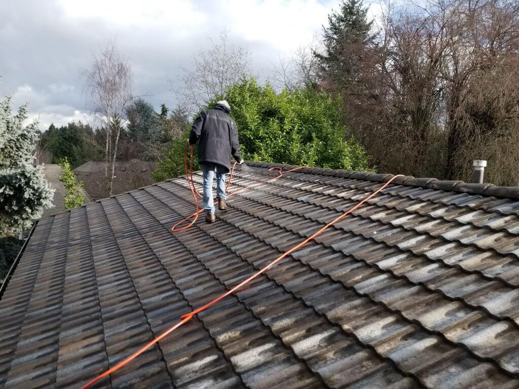 Roofing Services: Maintenance & Cleaning