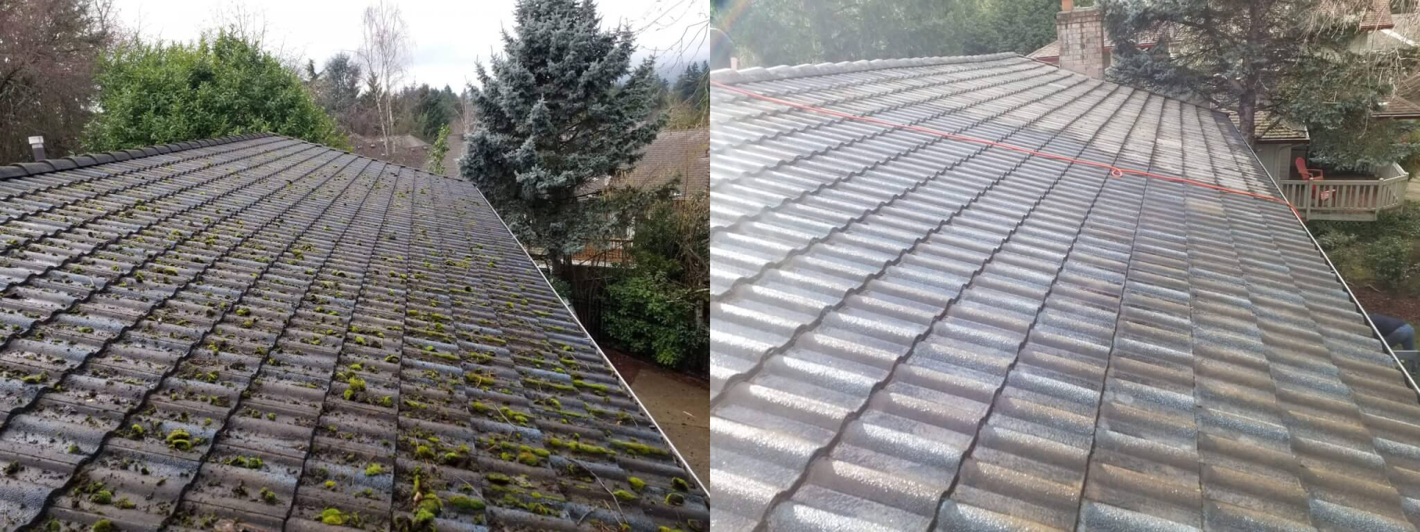 Roof Moss Removal Moss Treatments Roof Care Salem Oregon