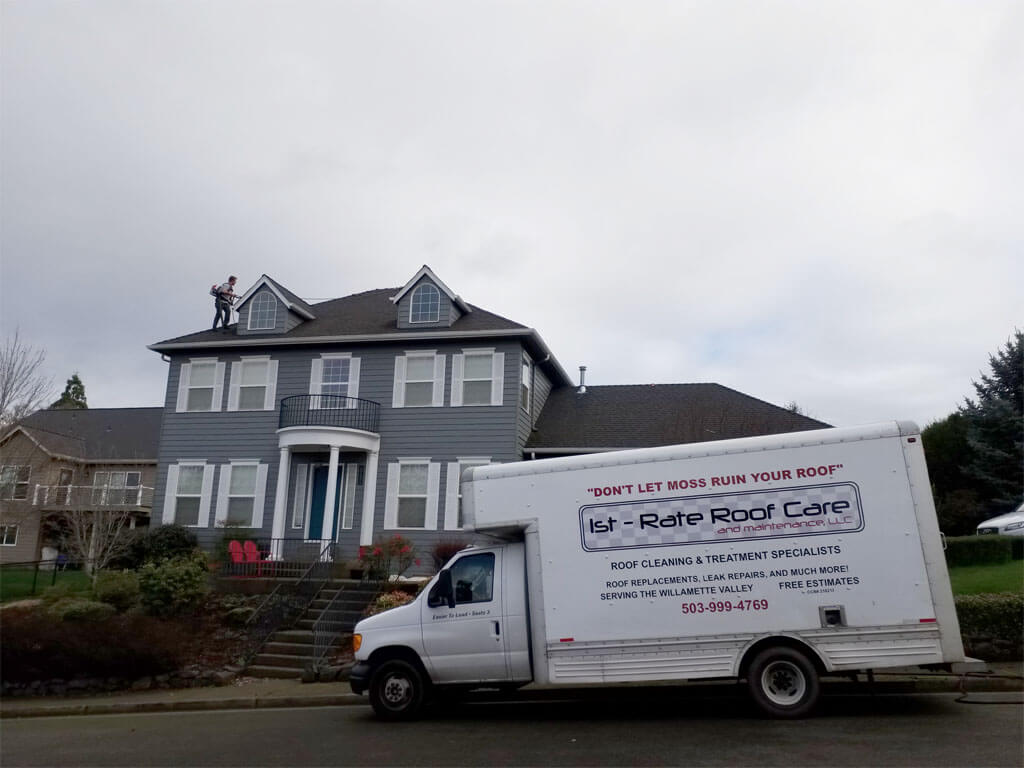 Roof Cleaning Experts